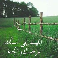 ام احمد